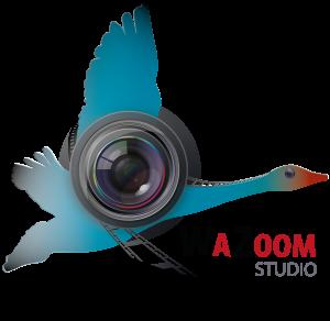 logo WAZOOM preprod 1.2(1)-01.png